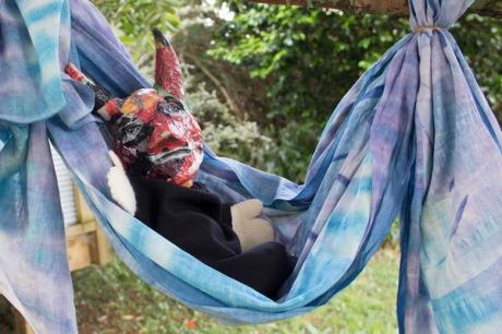 devil hammock